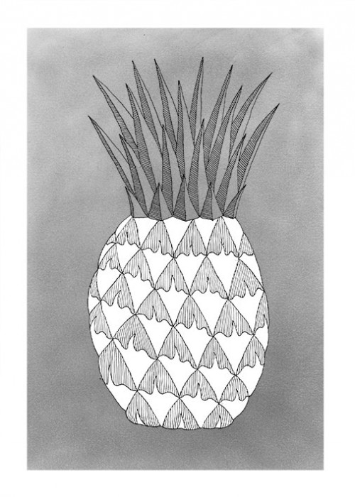 http://lilligaertner.de/files/gimgs/th-88_ananas_ganz.jpg